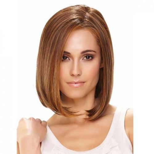 Human Hair Lace Front Wig Straight Brown Highlight #4/27